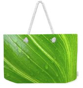 Green Living Weekender Tote Bag
