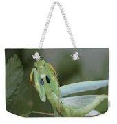 Green Mantis With Garden Background Vector Weekender Tote Bag