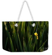 Green Marsh Grass At Sunrise On Lake Cassidy  Weekender Tote Bag