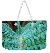 Green Nature Forest Fern Art Print Baslee Troutman  Weekender Tote Bag