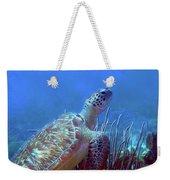 Green Sea Turtle 3 Weekender Tote Bag