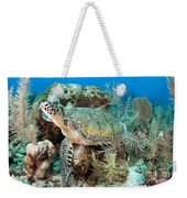 Green Sea Turtle On Caribbean Reef Weekender Tote Bag