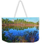 Green Swamp In December Weekender Tote Bag