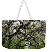 Green Swamp Oak Bower Weekender Tote Bag
