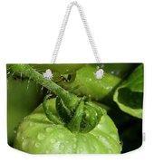 Green Tomatoes Weekender Tote Bag