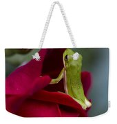 Green Tree Frog And Red Roses Weekender Tote Bag