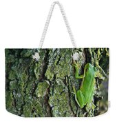 Green Tree Frog On Lichen Covered Bark Weekender Tote Bag