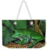 Green Tree Frog With A Smile Weekender Tote Bag by Kaye Menner