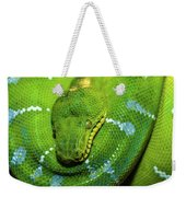 Green Tree Python Weekender Tote Bag