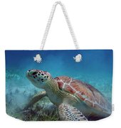 Green Turtle Weekender Tote Bag