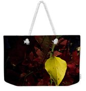 Greenbriar Leaf In Evening Sun Weekender Tote Bag
