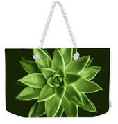 Greenery Succulent Echeveria Agavoides Flower Weekender Tote Bag