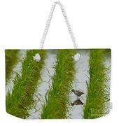 Greenshank Weekender Tote Bag