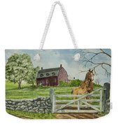 Greeting At The Gate Weekender Tote Bag