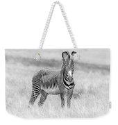 Grevy Zebra  5953bw Weekender Tote Bag
