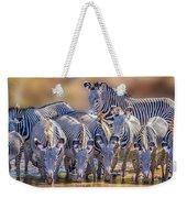 Grevy Zebra Party  7528 Weekender Tote Bag