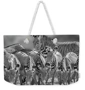 Grevy Zebra Party  7528bwc Weekender Tote Bag