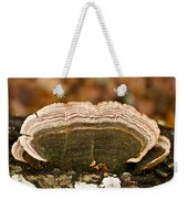 Grey Bracket Fungi Weekender Tote Bag