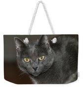 Grey Cat With Yellow Eyes Weekender Tote Bag