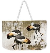 Grey Crowned Crain Of Africa 5 Weekender Tote Bag