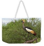 Grey Crowned Crane Weekender Tote Bag by Yair Karelic