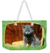 Grey Fluffy Kitten In Market Basket Weekender Tote Bag