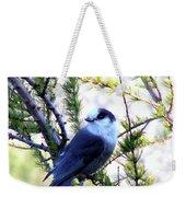 Grey Jay In A Juniper Tree Weekender Tote Bag