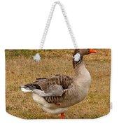 Greylag Goose 1 Weekender Tote Bag