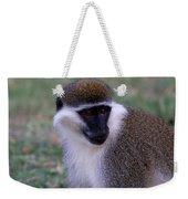 Grivet Monkey Ethiopia Weekender Tote Bag