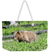 Grizzly Bear Cub In Yellowstone National Park Weekender Tote Bag