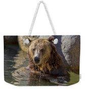 Grizzly Bear - San Diego Zoo Weekender Tote Bag