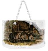 Grizzly Bear (ursus Ferox) Weekender Tote Bag