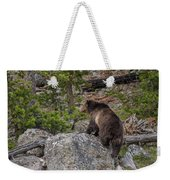 Grizzly Sow In Yellowstone Park Weekender Tote Bag