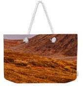 Grizzly Under The Rainbow Weekender Tote Bag