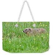 Groundhog In A Field Of Flowers Weekender Tote Bag