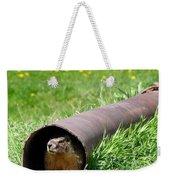 Groundhog In A Pipe Weekender Tote Bag