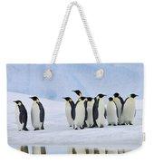 Group Of Emperor Penguins Weekender Tote Bag