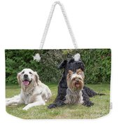 Group Of Three Dogs Weekender Tote Bag