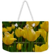 Grouping Of Yellow Tulips Weekender Tote Bag