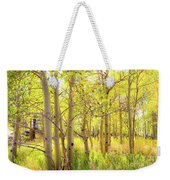 Grove Of Aspens On An Autumn Day Weekender Tote Bag