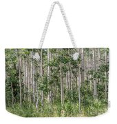 Grove Of Quaking Aspen Aka Quakies Weekender Tote Bag