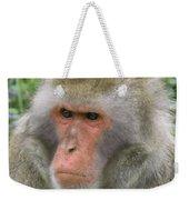 Grumpy Monkey Weekender Tote Bag