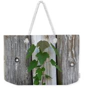 Guarded By The Ancients Weekender Tote Bag