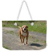 Guarding Pit Bull Dog Weekender Tote Bag