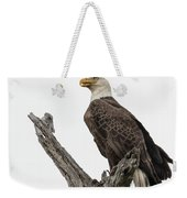 Guarding The Nest Weekender Tote Bag