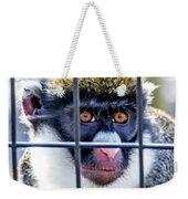 Guenon Monkey Weekender Tote Bag