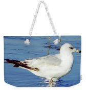 Gull - Beach -reflection Weekender Tote Bag