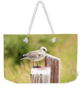 Gull On A Post Weekender Tote Bag