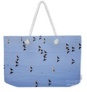 Gulls And Reflections Dot The Water Weekender Tote Bag