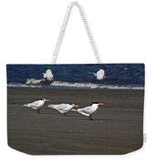 Gulls On Beach Weekender Tote Bag